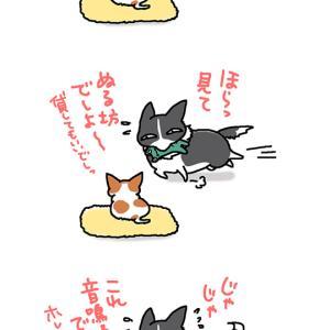 手を替え品を替え・11月18日のピピちく/【犬マンガ】