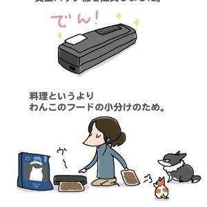 これもわんこ用途・11月19日の飼い主/【犬マンガ】