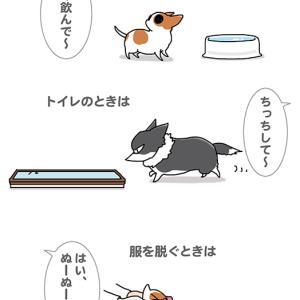 やっぱり赤ちゃん言葉・12月6日の飼い主/【犬マンガ】