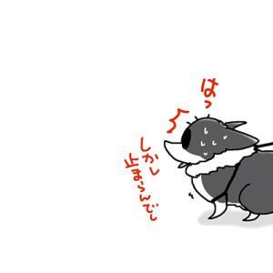 タイミング悪し・12月9日のピピぞう/【犬マンガ】