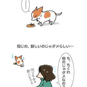 こだわりチワワ・4月6日の飼い主/【犬マンガ】