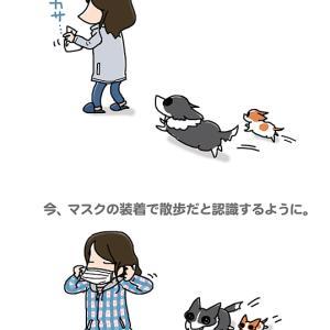 ある意味コロナの影響・4月17日のピピちく/【犬マンガ】