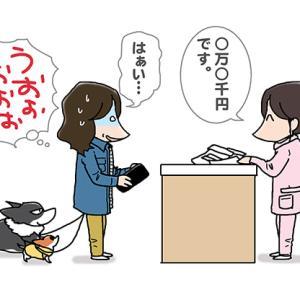 財布が真冬・4月20日のピピぞう/【犬マンガ】