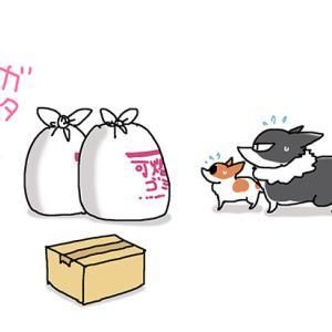 グータラ生活のツケ・5月3日の飼い主/【犬マンガ】