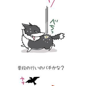 カラスの仕返し・5月20日のピピぞう/【犬マンガ】