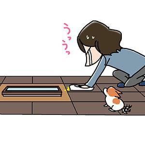 マット敷いたのに・5月21日の飼い主/【犬マンガ】