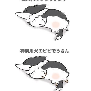このごろの違い・5月22日のピピぞう/【犬マンガ】