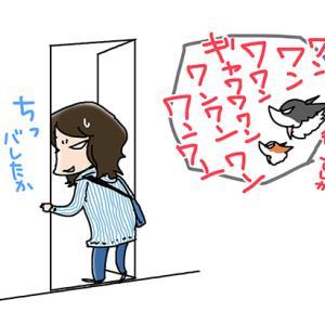 成功例ナシ・5月29日のピピちく/【犬マンガ】