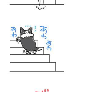 方向転換できない犬・6月10日のピピぞう/【犬マンガ】