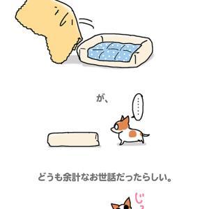夏も冬も関係ない・6月12日のちくわ/【犬マンガ】