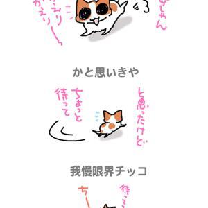 我慢限界チッコ・6月17日のちくわ/【犬マンガ】