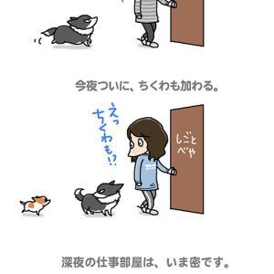 真夜中の密・6月22日のピピちく/【犬マンガ】