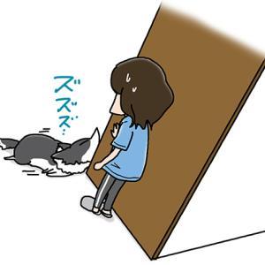 熟睡の極み・7月10日のピピぞう/【犬マンガ】