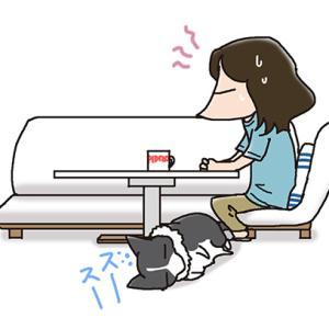 言えないひとこと・7月13日のピピぞう/【犬マンガ】