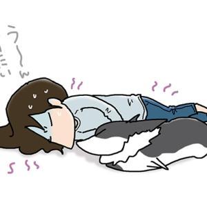 添い寝が痛い・7月14日のピピぞう/【犬マンガ】