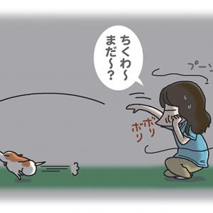 早く飽きて・8月6日の飼い主/【犬マンガ】