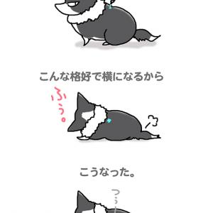流れるスポット薬・8月13日のピピぞう/【犬マンガ】
