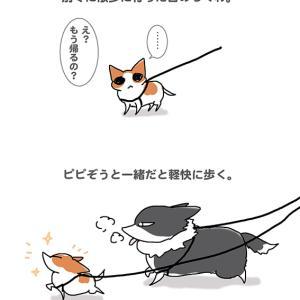 兄ちゃんと一緒・9月25日のちくわ/【犬マンガ】