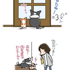 帰宅は飼い主だけですよ・9月29日のピピちく/【犬マンガ】