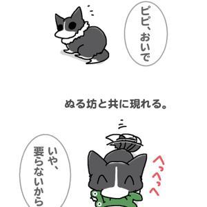 ピピぞうとぬる坊・10月1日のピピぞう/【犬マンガ】