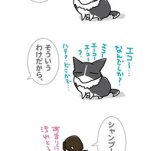 エコーの前に・10月26日のピピぞう/【犬マンガ】