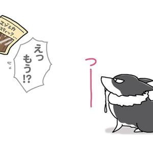 秒ヨダレ・11月25日のピピぞう/【犬マンガ】