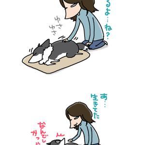 起きない犬・11月27日のピピぞう/【犬マンガ】
