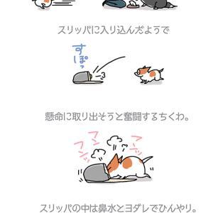 ひんやりスリッパ・12月3日のちくわ/【犬マンガ】