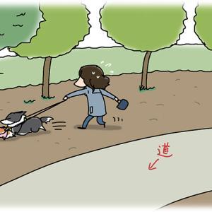 道を歩きたい・3月4日のピピちく/【犬マンガ】