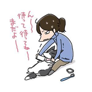 歯石撮れないいぃ!・3月8日の飼い主/【犬マンガ】