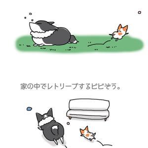 庭で走れ・4月28日のピピぞう/【犬マンガ】