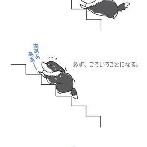 階段の真ん中で・5月13日のピピぞう/【犬マンガ】
