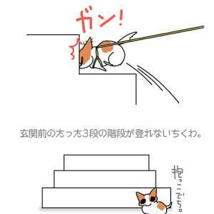 登れない3段・5月28日のちくわ/【犬マンガ】