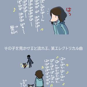 エレクトリカル散歩・6月16日の飼い主/【犬マンガ】