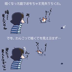 見えないはずがない・6月22日のちくわ/【犬マンガ】