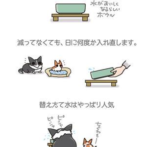 入れたて人気・6月24日のピピちく/【犬マンガ】