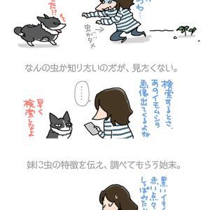 人まかせ検索・9月17日の飼い主/【犬マンガ】