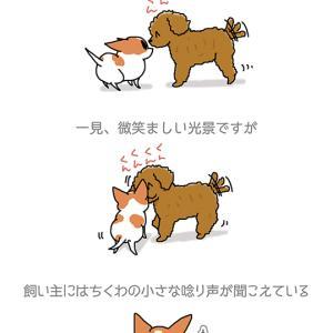 小さなウー・9月22日のちくわ/【犬マンガ】