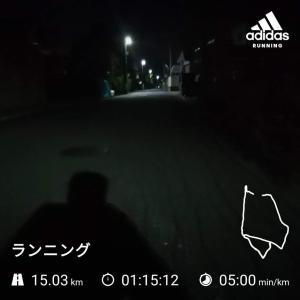 走り過ぎて脚が痛い。