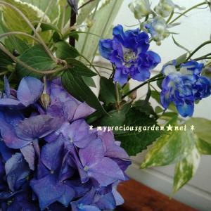 6月も沢山花が咲くので切った花を花瓶に投入しています