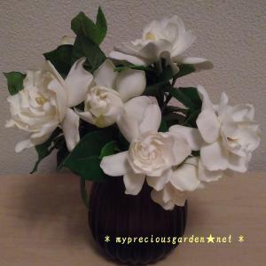 梅雨時のジメジメした空気を吹き飛ばす白い花たち ~ その2 香る花 ~