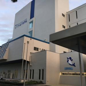 【MOGUMOGU食べ歩きくま 2】聖地巡礼! 鴨川シーワールドホテルに宿泊 & シャチ鑑賞