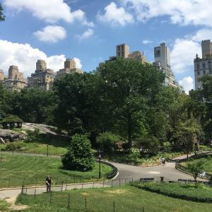 保護中: 【ニューヨーク旅行】マンハッタン都会のオアシス!セントラルパーク散歩