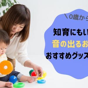 赤ちゃんから3歳まで!音の出るおもちゃおすすめ12選と手作り方法を紹介