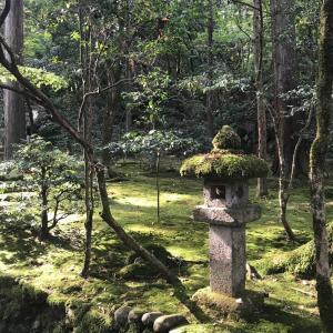 那谷寺で紅葉狩り