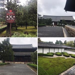 東福寺で絶叫
