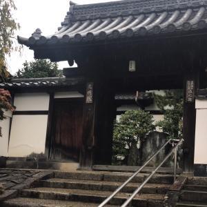 京都・光明院で目を細める