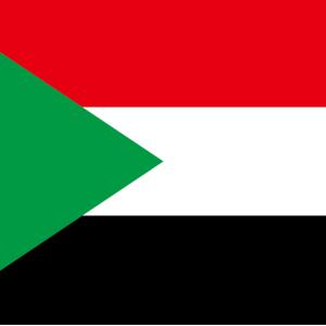 【エジプト:カイロ】スーダンビザ発行で足踏み中。。。