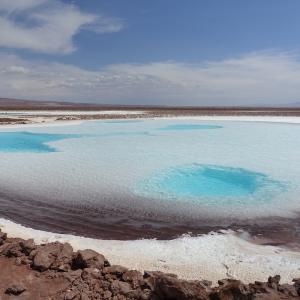 【チリ:アタカマ】死海以上!?身体が宙に浮く塩湖へ。エスコンディダ湖!