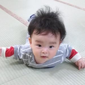 【思い出クラッシュ】飛び級で技を覚える息子くん